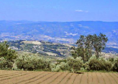 La Forestella Pranzo 15giu2013 - 70